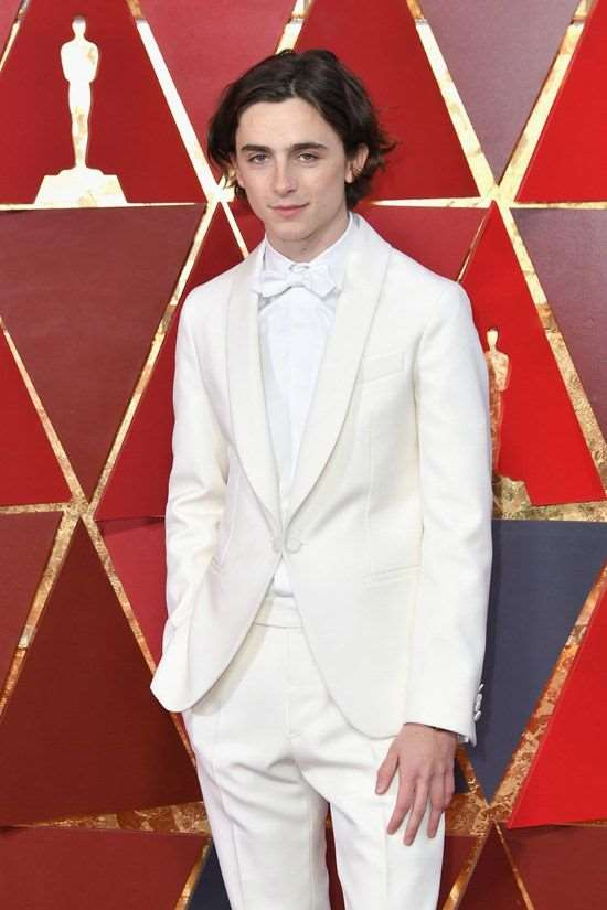 Timothee Chalamet Birthday, Real Name, Age, Weight, Height
