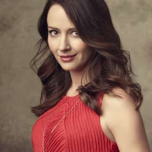 Amy Acker born December 5, 1976 (age 41) nudes (48 photo), Pussy, Paparazzi, Selfie, butt 2015