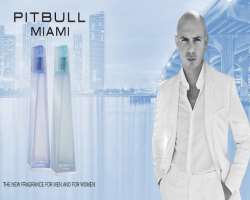 Pitbull Birthday, Real Name, Age, Weight, Height, Family